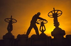 Brazil có thể trở thành nhà sản xuất dầu hàng đầu thế giới