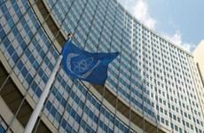 IAEA ấn định thời điểm tiến hành bổ nhiệm Tổng Giám đốc mới