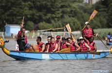 Hơn 2.500 người tham dự lễ hội đua thuyền rồng lớn nhất tại Mỹ