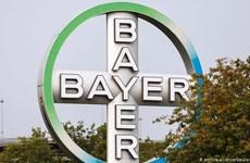 Bayer bán công ty hóa chất Currenta cho Macquarie với giá 3,92 tỷ USD