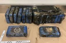 Phát hiện số cocaine trị giá gần 2 triệu USD trên bãi biển New Zealand