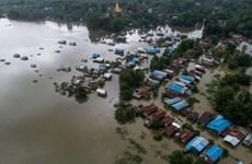 Hàng chục nghìn người ở Myanmar sơ tán do lũ lụt hoành hành