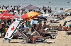 Hà Lan: Gần 400 người thiệt mạng trong đợt nắng nóng kỷ lục