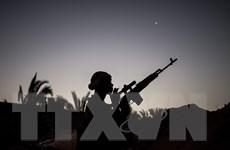 LHQ kêu gọi ngừng bắn nhân đạo giữa các phe phái đối địch tại Libya