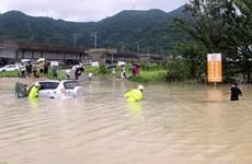 Trung Quốc: Gần 13 triệu người bị ảnh hưởng do bão Lekima