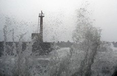 Video siêu bão Krosa sắp vào Nhật Bản, có khả năng gây mưa lớn