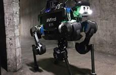 Robot tranh tài trong cuộc thi hoạt động ngầm dưới mặt đất tại Mỹ