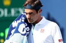 """""""Tàu tốc hành"""" Federer nhận thất bại nhanh nhất kể từ năm 2003"""