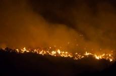 Tây Ban Nha sơ tán dân tại Gran Canaria do lại xảy ra cháy rừng