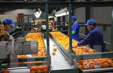 AfDB cảnh báo những nguy cơ đe dọa tăng trưởng kinh tế châu Phi