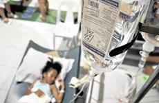 Dịch sốt xuất huyết diễn biến nghiêm trọng tại Philippines