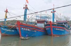Nghệ An quyết định cấm tàu thuyền ra khơi đánh bắt hải sản