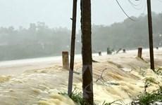 Bão số 4 và hoàn lưu sau bão đã làm 7 người thương vong