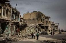Các nước Arab nhất trí với tầm nhìn của Iraq về ổn định khu vực