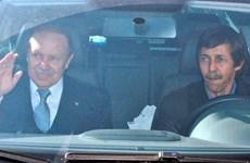 Algeria ấn định ngày xét xử cựu quan chức liên quan đến ông Bouteflika