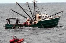 Mỹ khiếu nại Hàn Quốc về việc đánh bắt hải sản bất hợp pháp
