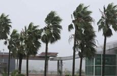 Bão Tapah đổ vào Tây Nam Nhật Bản, hàng trăm chuyến bay bị hủy