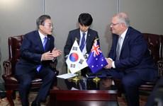 Hàn Quốc và Australia nhất trí tăng cường hợp tác song phương