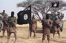 Một nhân viên cứu trợ tại Nigeria bị phiến quân hành quyết