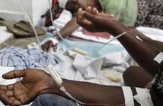 WHO báo động về số các ca mắc dịch tả gia tăng tại Sudan