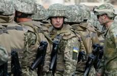 Ukraine: Hoãn ngày rút lực lượng các phe phái khỏi vùng trung lập