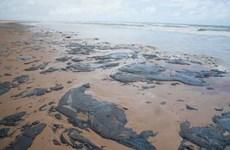 Venezuela bác bỏ cáo buộc của Brazil về sự cố tràn dầu trên biển