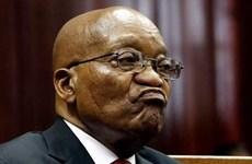 Nam Phi: Cựu Tổng thống Jacob Zuma bị xét xử tội tham nhũng