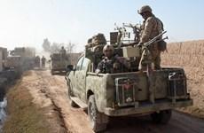 Afghanistan giải phóng 16 ngôi làng, tiêu diệt 12 phiến quân Taliban