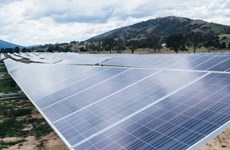 Giới chuyên gia cảnh báo Australia sắp đạt mức thải khí cao nhất