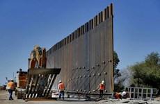 Tổng thống Mỹ gây bất ngờ với ý tưởng xây tường an ninh mới