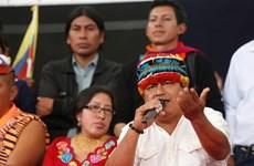 Ecuador: Liên đoàn CONAIE hủy cuộc đối thoại với chính phủ