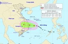 Ứng phó với bão số 5: Quảng Ngãi cho học sinh nghỉ học