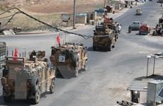 Nhiều người Đức muốn NATO loại bỏ tư cách thành viên của Thổ Nhĩ Kỳ