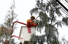Ninh Thuận hạn chế đến mức thấp nhất thiệt hại do bão số 5