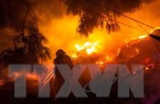 'Giặc lửa' tiếp tục hoành hành tại bang California của Mỹ