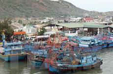 Ninh Thuận cấm biển không cho tàu thuyền ra khơi đánh bắt