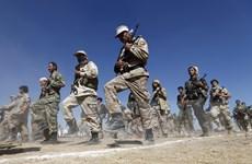 UAE: Phiến quân Houthi sẽ có vai trò trong tương lai của Yemen