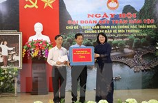 Phó Chủ tịch nước dự ngày hội đại đoàn kết toàn dân tộc tại Ninh Bình