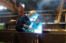 Việt Nam dẫn đầu về lao động làm ở Nhật theo chính sách thị thực mới