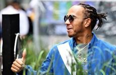 Nhà vô địch F1 Lewis Hamilton chờ thỏa thuận gia hạn từ Mercedes