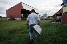 Lời hứa của Tổng thống Donald Trump với nông dân Mỹ