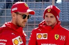 Ferrari chấn chỉnh Vettel và Lerlec sau 'nội chiến' trên đường đua