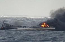 Thuyền viên Việt mất tích trong vụ cháy tàu cá: Ưu tiên tối đa cứu hộ
