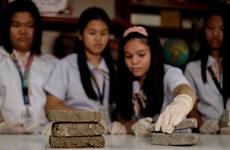 Học sinh Philippines với ý tưởng làm gạch từ chất thải của chó