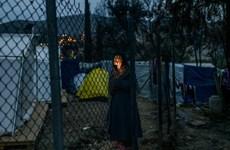 Vấn đề người di cư: Hy Lạp đóng cửa ba trại tị nạn lớn nhất