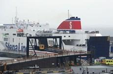 Cảnh sát Ireland phát hiện 16 người nhập cư trong container đóng kín