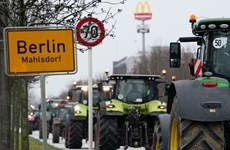 Đức: Nông dân phong tỏa Berlin, phản đối chính sách nông nghiêp
