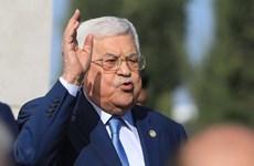 Tổng thống Palestine bày tỏ lập trường về mối quan hệ với Israel, Nga