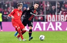 Bundesliga: Bayern thua sốc, RB Leipzig tạm trở lại ngôi đầu
