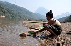 Biến đổi khí hậu: Thời tiết cực đoan gây hạn hán trầm trọng tại Lào